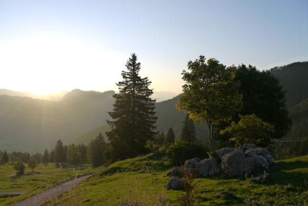 Yoga und Wandern Ammergau