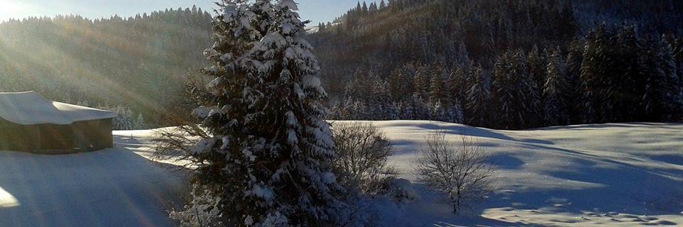 geführte schneeschuhwanderung allgäu